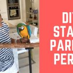 DIY STAND PARROT PEARCH